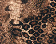 Big CheetahThis is a very soft feeling fabric. Lightly shimmered with Gold does not show on scan)